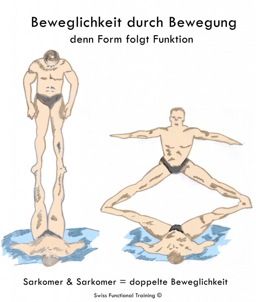 Beweglichkeit durch Bewegung