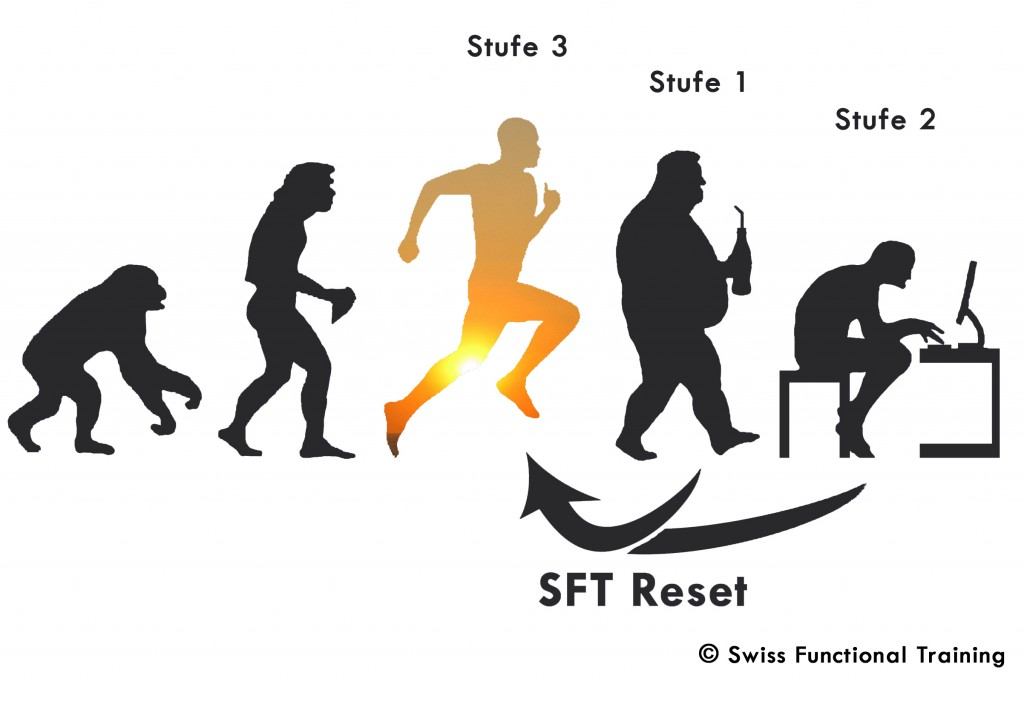SFT Evolution c